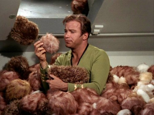 Kirk_surrounded_by_Tribbles