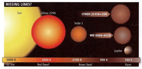 Brown dwarfs fall somewhere in the middle between stars and planets.