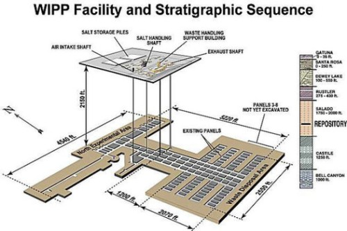 Layout of WIPP facility.